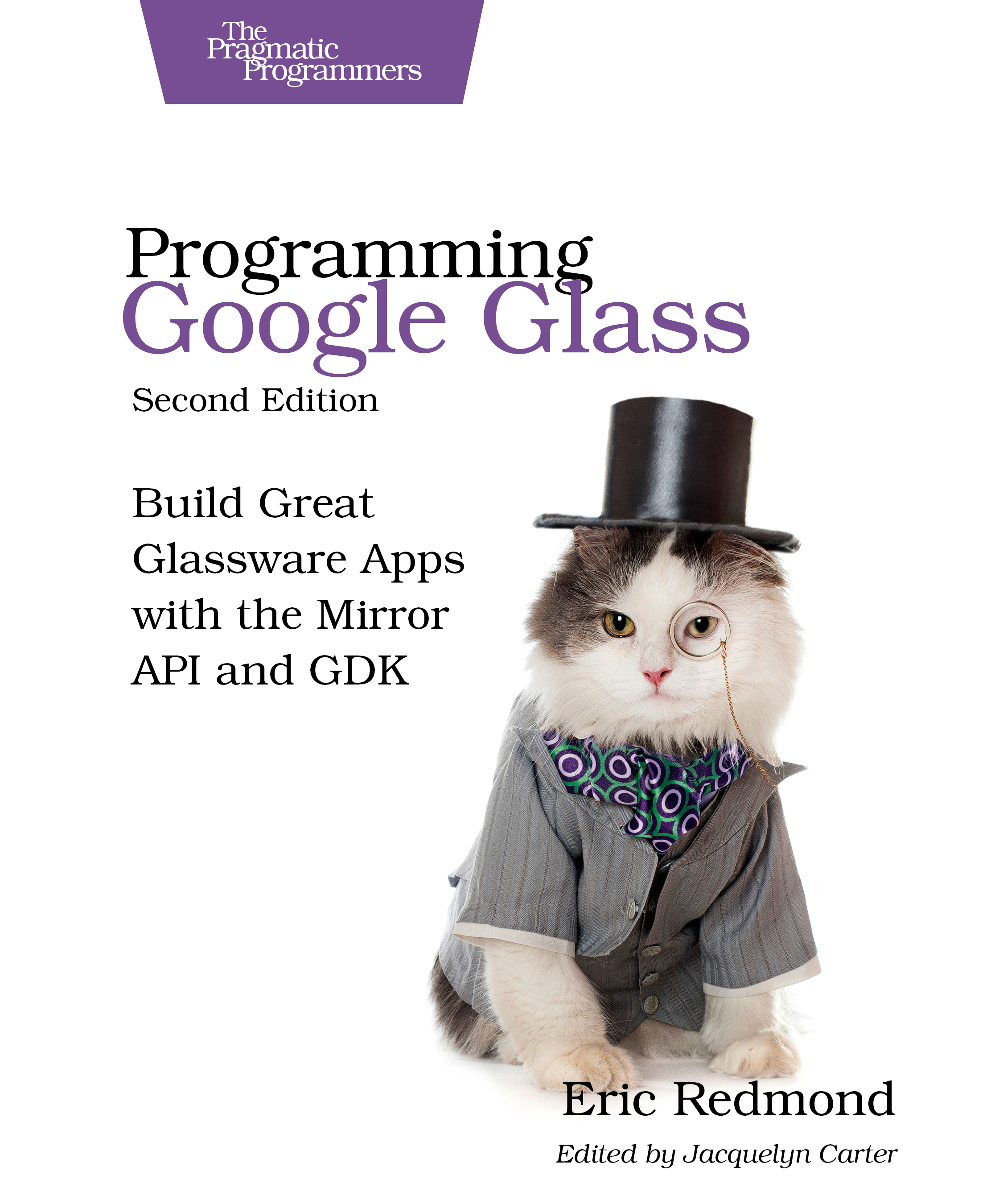 Cover image for Programming Google Glass